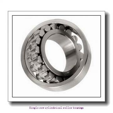 85 mm x 180 mm x 60 mm  NTN NU2317 Single row cylindrical roller bearings