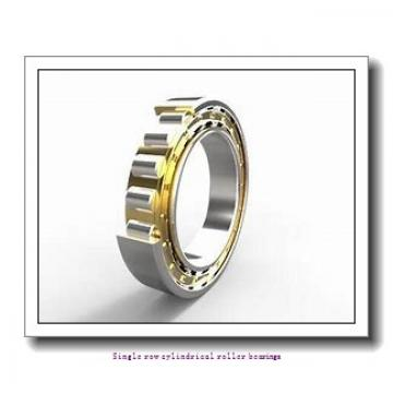 105 mm x 190 mm x 36 mm  SNR NU.221.E.G15.C3 Single row cylindrical roller bearings