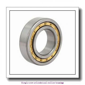 220 mm x 400 mm x 65 mm  NTN NU244 Single row cylindrical roller bearings