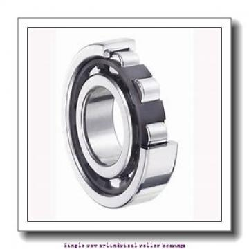 75 mm x 160 mm x 55 mm  NTN NU2315EG1 Single row cylindrical roller bearings